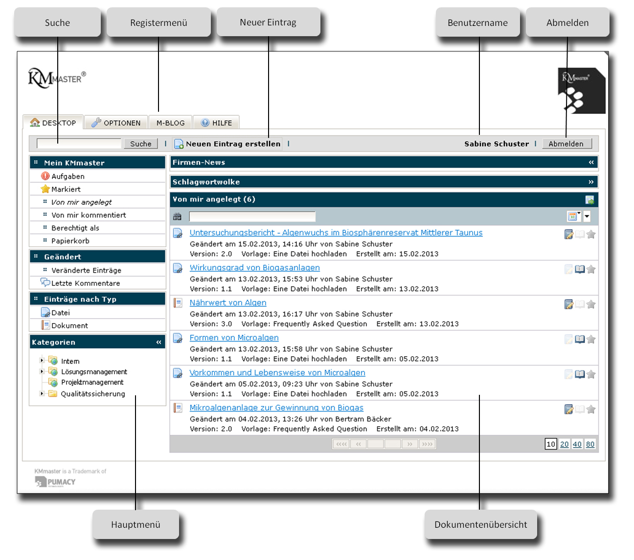 informationstechnologie knowledge management software
